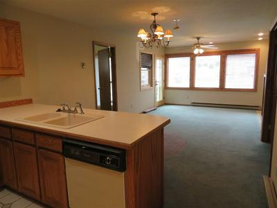 251 SLATE RIVER DR # 4, Crested Butte, CO 81224 - Photo 2