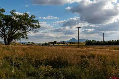 20750 HIGHWAY 491, LEWIS, CO 81327 - Photo 1