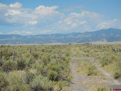 ROAD R & ROAD 50, Saguache, CO 81149 - Photo 2