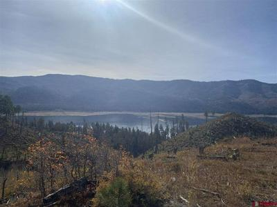 TBD LAKE VIEW DRIVE, Vallecito Lake/Bayfield, CO 81122 - Photo 1