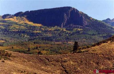 663 USFS RD X ESMT, Pagosa Springs, CO 81147 - Photo 2