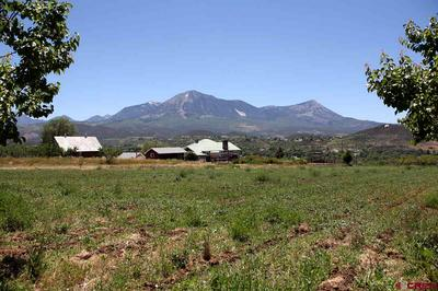 TBD SWANSON ROAD, Paonia, CO 81428 - Photo 1
