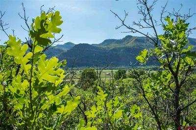 4351 COUNTY ROAD 203, Durango, CO 81301 - Photo 2