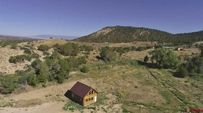 2850 AND 2890 CLEAR FORK ROAD, Crawford, CO 81415 - Photo 2