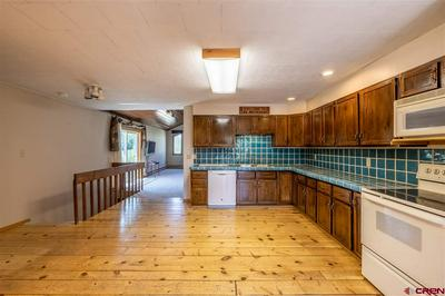 17241 HIGHWAY 135, Almont, CO 81210 - Photo 2