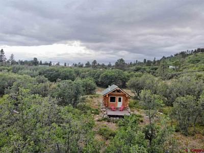 257 ELDERBERRY LN, Pagosa Springs, CO 81147 - Photo 2