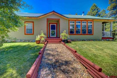 155 HURT DR, Pagosa Springs, CO 81147 - Photo 2
