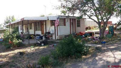 9809 2100 RD, Austin, CO 81410 - Photo 1