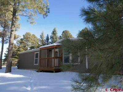 364 FIRESIDE ST, Pagosa Springs, CO 81147 - Photo 2