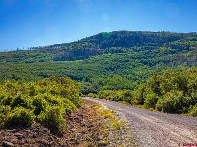 LOT 12 STONEY CREEK ROAD, Hotchkiss, CO 81419 - Photo 1