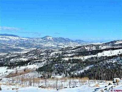 334 BOBCAT CT, South Fork, CO 81154 - Photo 2