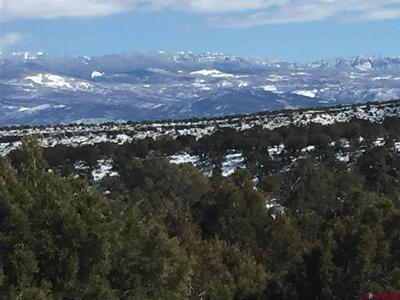 60440 SAN JUAN TRL, Montrose, CO 81403 - Photo 1