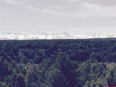 60440 SAN JUAN TRL, Montrose, CO 81403 - Photo 2