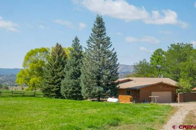 1076 COUNTY ROAD 214, Durango, CO 81303 - Photo 1