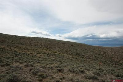 40 AC OFF COUNTY ROAD 38, Gunnison, CO 81230 - Photo 1