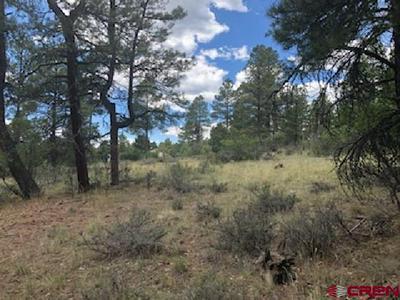 72 SANDSTONE CT, Pagosa Springs, CO 81147 - Photo 2