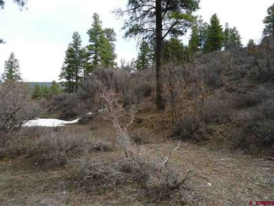 272 HOLLOW DR, Pagosa Springs, CO 81147 - Photo 2
