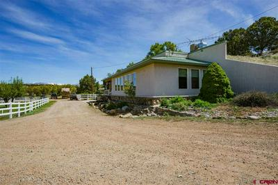 13905 HIGHWAY 140, Hesperus, CO 81326 - Photo 1