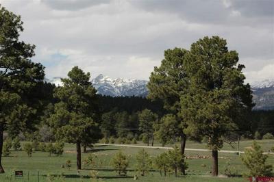 739 INDUSTRIAL CIR, Pagosa Springs, CO 81147 - Photo 1