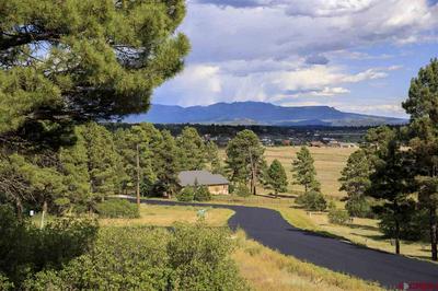 156 POWDERHORN DR, Pagosa Springs, CO 81147 - Photo 1