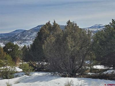 536 CASTLE ROCK RD, SOUTH FORK, CO 81154 - Photo 1