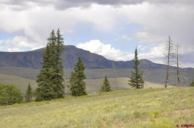320 CROOKED CREEK RUN, Creede, CO 81130 - Photo 1