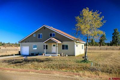 136 SAM HOUSTON AVE, Pagosa Springs, CO 81147 - Photo 1