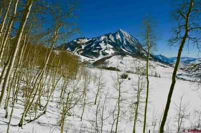 69 PEELER LN, Crested Butte, CO 81224 - Photo 2