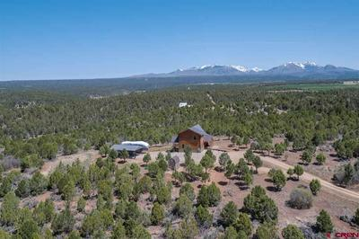 10206 COUNTY ROAD 120, Hesperus, CO 81326 - Photo 2