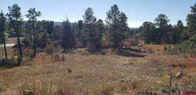 169 ACE CT, Pagosa Springs, CO 81147 - Photo 2