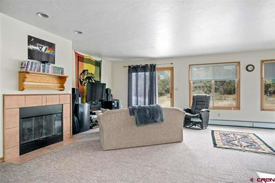 257 JENKINS RANCH RD, DURANGO, CO 81301 - Photo 2