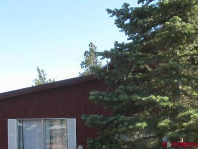 35 HARMAN PARK DR, Pagosa Springs, CO 81147 - Photo 1