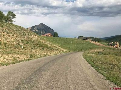 180 MEADOW DR, Crested Butte, CO 81224 - Photo 1