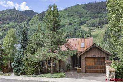 832 BUTCHER CREEK DR, Telluride, CO 81435 - Photo 1
