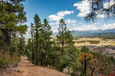 1301 LIGHT PLANT RD, Pagosa Springs, CO 81147 - Photo 2