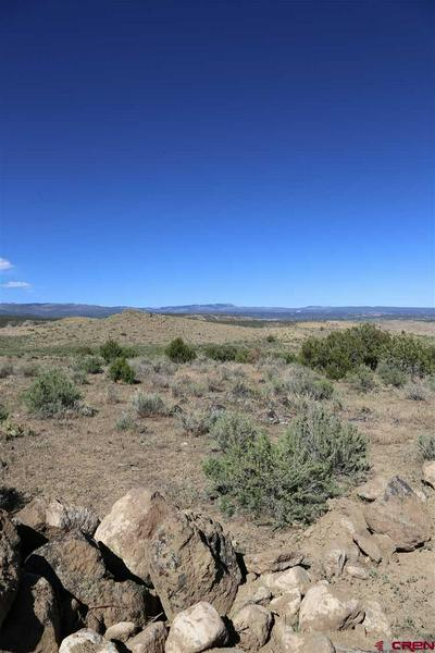 PARCEL 2 OAK CREEK ROAD, Eckert, CO 81418 - Photo 2