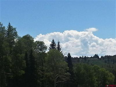 453 HAZEL LAKE DR, Cimarron, CO 81220 - Photo 2