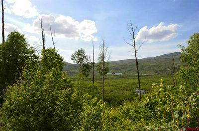 LOT 4 3100 ROAD, Hotchkiss, CO 81419 - Photo 2