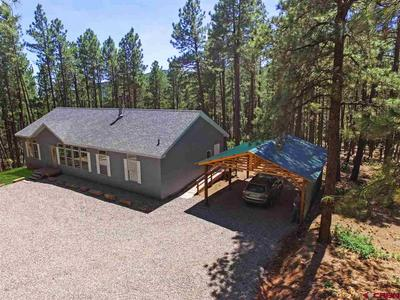 53 PINE TOP DR, Bayfield, CO 81122 - Photo 2
