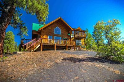 201 CRESTONE PL, Pagosa Springs, CO 81147 - Photo 2