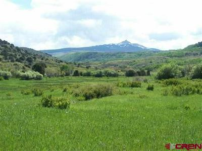 LOT 21 LONE CONE RANCHES, Dolores, CO 81323 - Photo 1