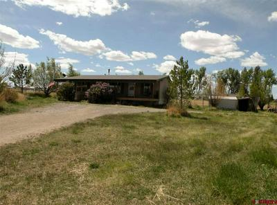 35348 HIGHWAY 145, Redvale, CO 81431 - Photo 2