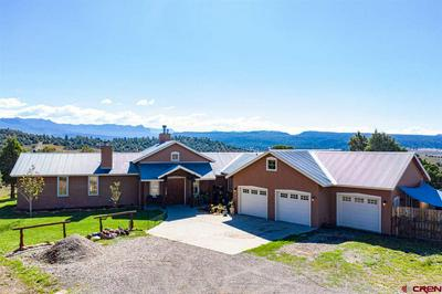 567 TALL PINE PL, Pagosa Springs, CO 81147 - Photo 2