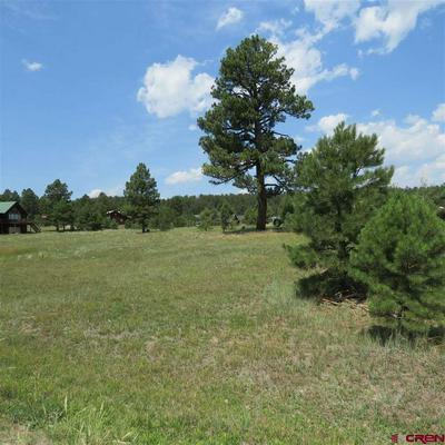 277 GRENADIER PL, Pagosa Springs, CO 81147 - Photo 1