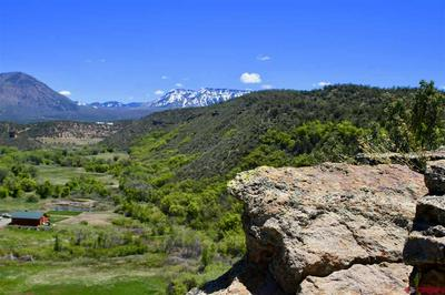TBD CONSERVANCY ROAD, Crawford, CO 81415 - Photo 1