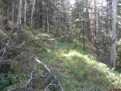 TBD CEMETERY ROAD, Pitkin, CO 81241 - Photo 2