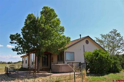 380 QUARTER HORSE RD, Durango, CO 81303 - Photo 2