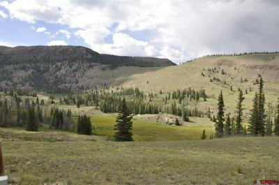 320 CROOKED CREEK RUN, Creede, CO 81130 - Photo 2