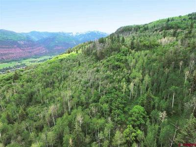 LOT 16 TIMBER ROAD, Ridgway, CO 81432 - Photo 2