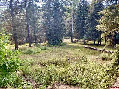 331 WILDERNESS DR, Durango, CO 81301 - Photo 2